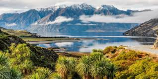 new Zélande